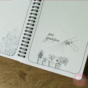 Φυτουλόγιο-το ημερολόγιο ενός φύτουλα